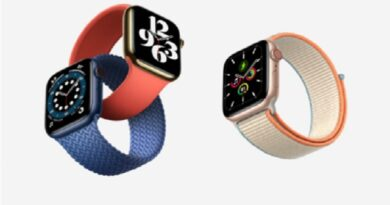 Apple Watch straps fit