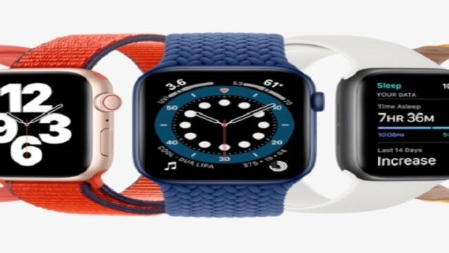 Which Apple Watch do I have